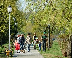 Прогулочная парковая аллея